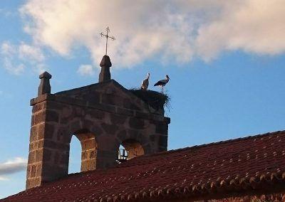 Imagen del campanario de la iglesia de Mironcillo