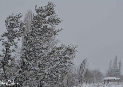 Nevada en Mironcillo (Ávila) en enero de 2021